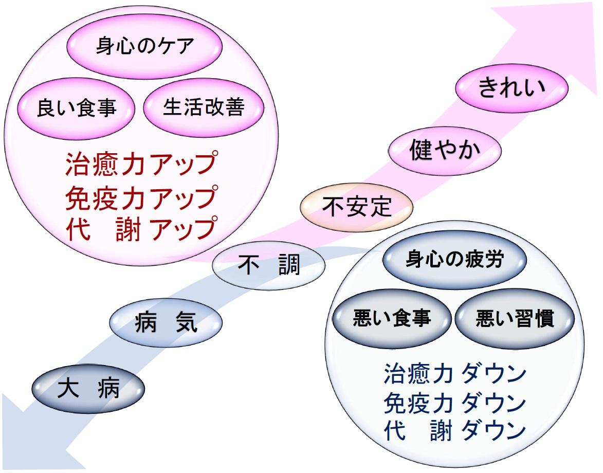 スマイルボディが提供すること 1-2016.7